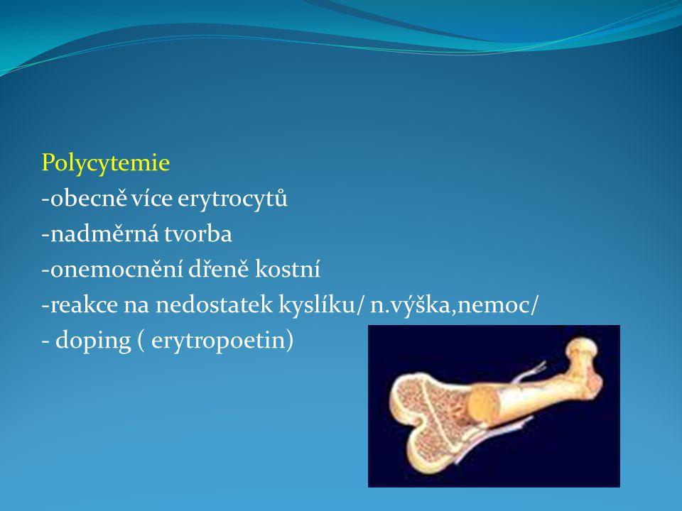 Polycytemie -obecně více erytrocytů. -nadměrná tvorba. -onemocnění dřeně kostní. -reakce na nedostatek kyslíku/ n.výška,nemoc/