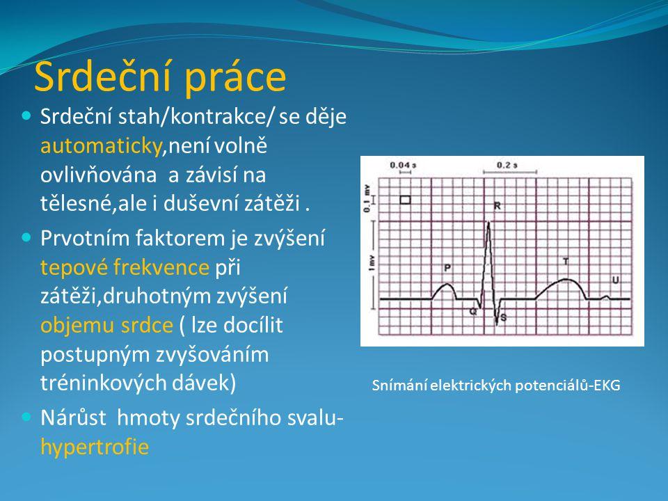 Srdeční práce Srdeční stah/kontrakce/ se děje automaticky,není volně ovlivňována a závisí na tělesné,ale i duševní zátěži .