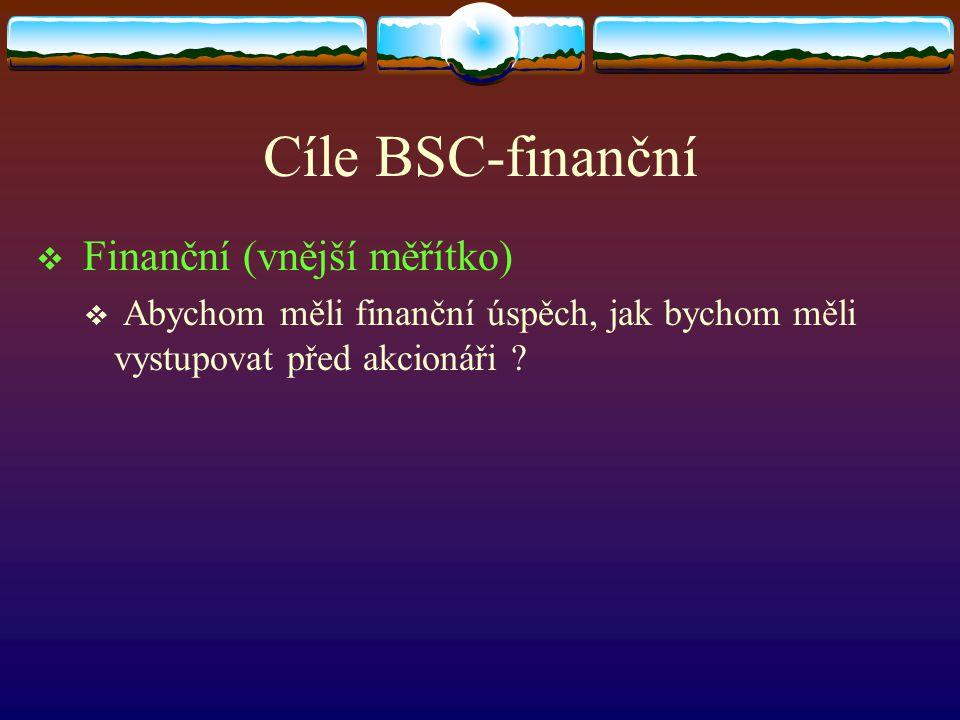 Cíle BSC-finanční Finanční (vnější měřítko)