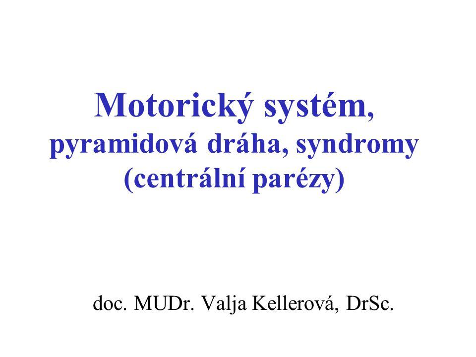 Motorický systém, pyramidová dráha, syndromy (centrální parézy)