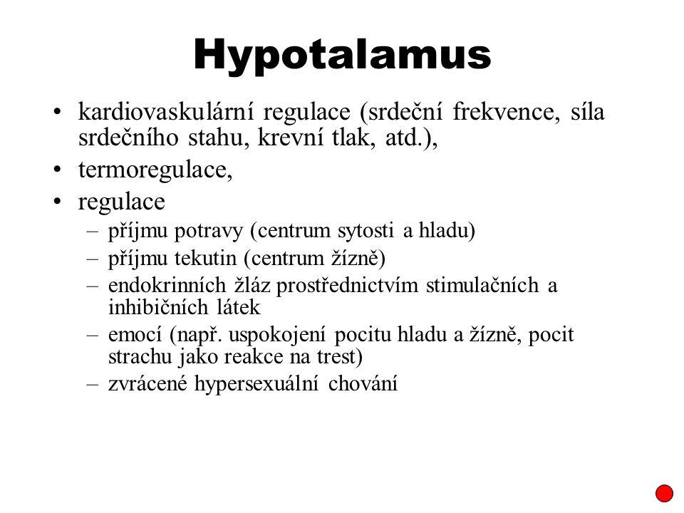 Hypotalamus kardiovaskulární regulace (srdeční frekvence, síla srdečního stahu, krevní tlak, atd.),