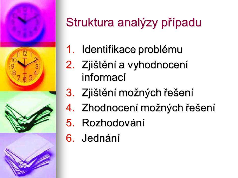 Struktura analýzy případu