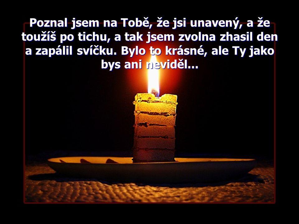 Poznal jsem na Tobě, že jsi unavený, a že toužíš po tichu, a tak jsem zvolna zhasil den a zapálil svíčku.