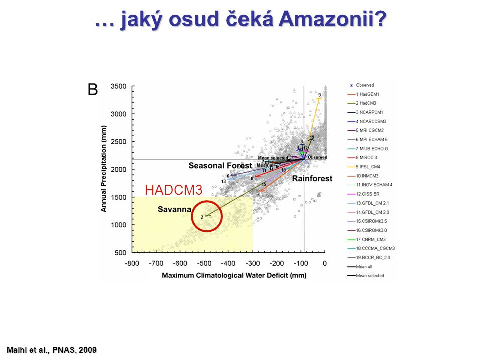 … jaký osud čeká Amazonii