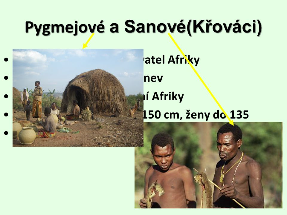 Pygmejové a Sanové(Křováci)