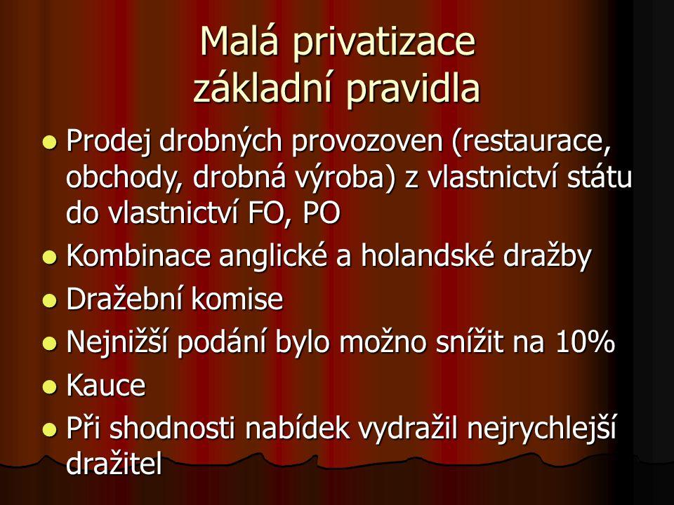 Malá privatizace základní pravidla