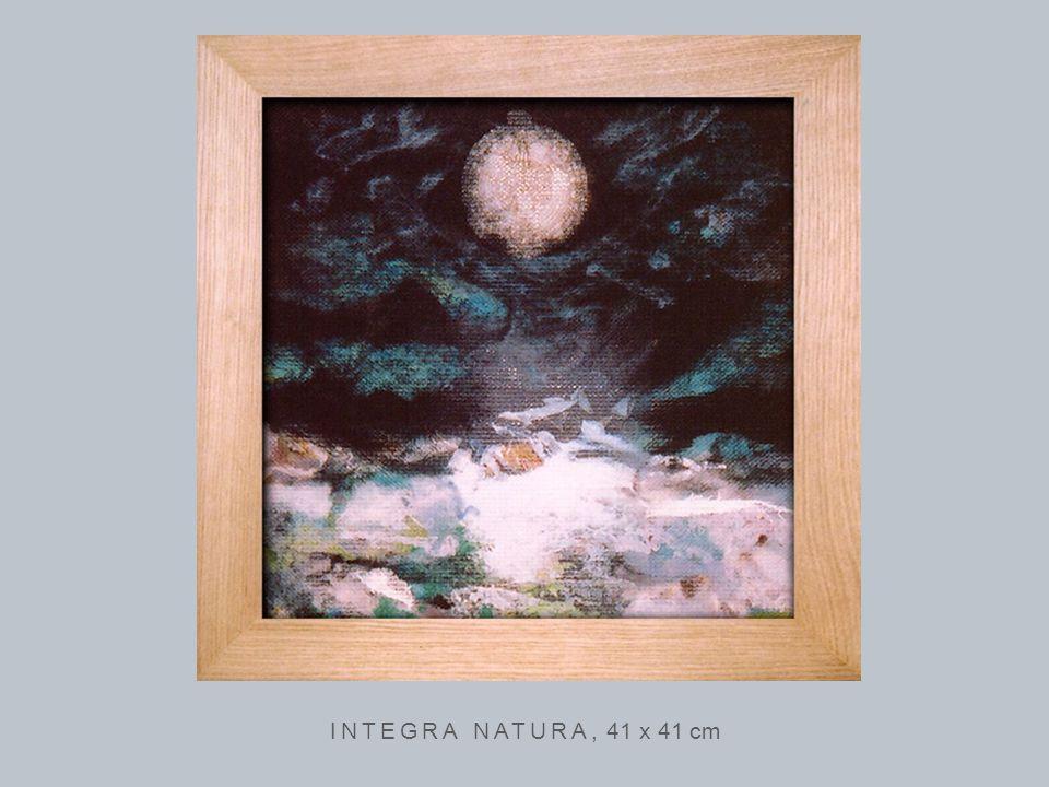INTEGRA NATURA, 41 x 41 cm