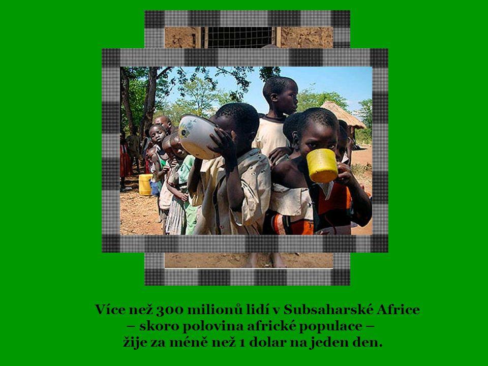 Více než 300 milionů lidí v Subsaharské Africe