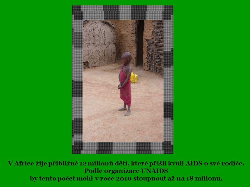 Podle organizace UNAIDS