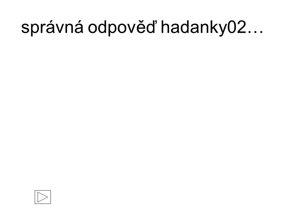 správná odpověď hadanky02…