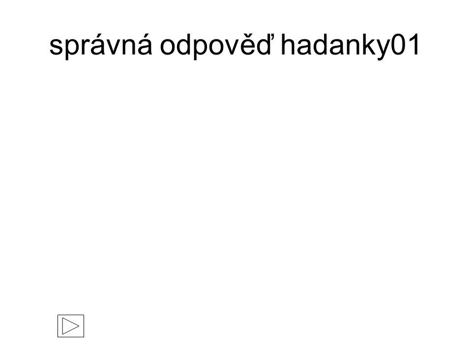 správná odpověď hadanky01