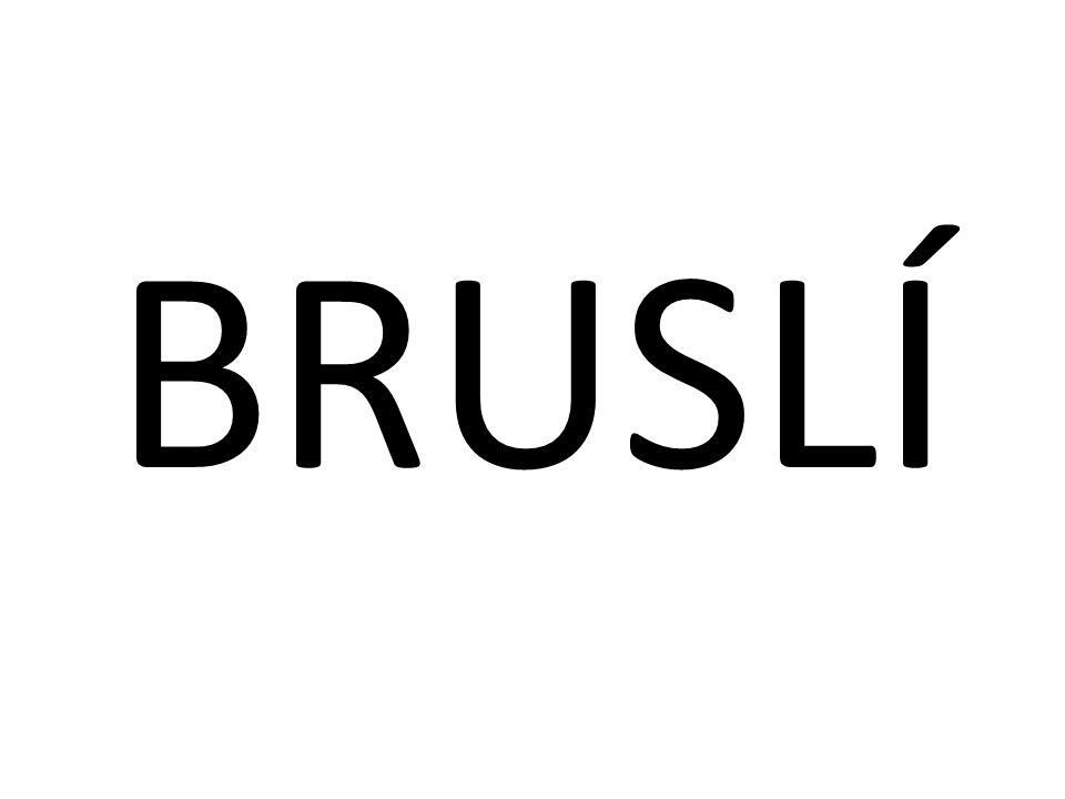 BRUSLÍ