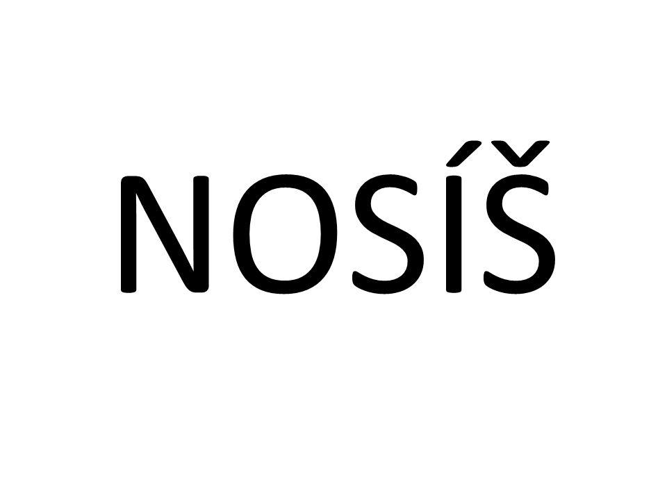NOSÍŠ