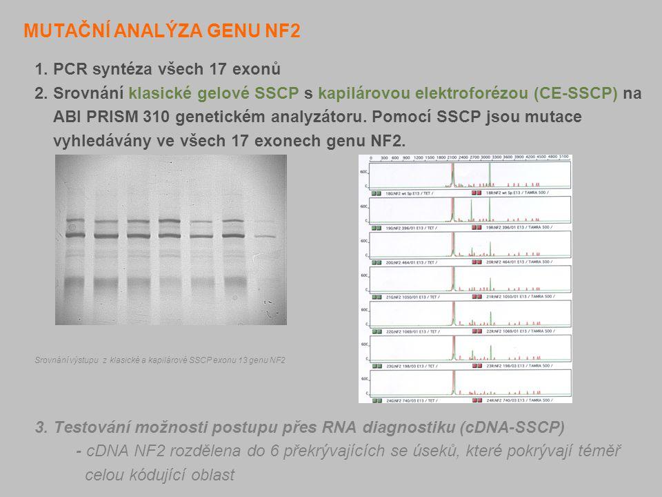 MUTAČNÍ ANALÝZA GENU NF2