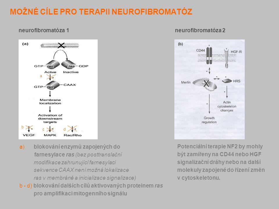 MOŽNÉ CÍLE PRO TERAPII NEUROFIBROMATÓZ