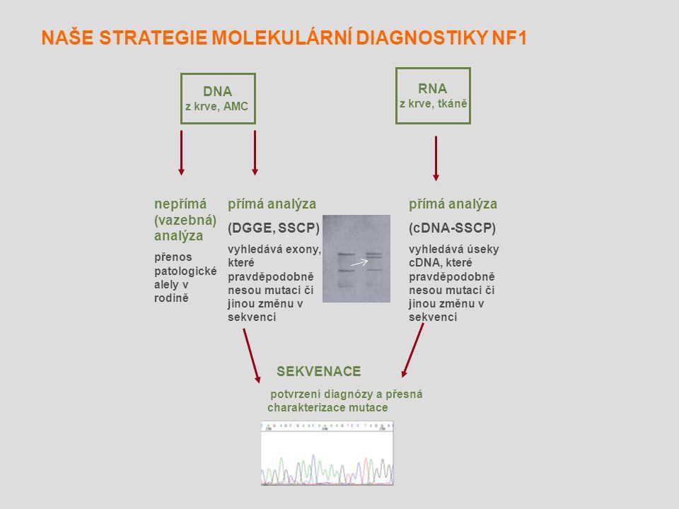 NAŠE STRATEGIE MOLEKULÁRNÍ DIAGNOSTIKY NF1
