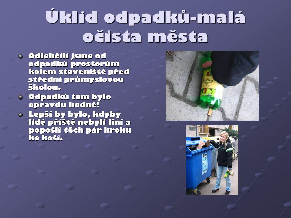 Úklid odpadků-malá očista města