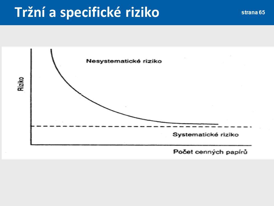 Tržní a specifické riziko