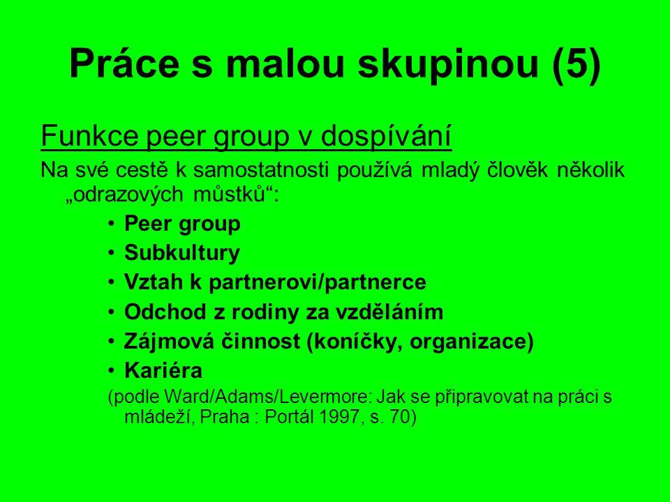 Práce s malou skupinou (5)