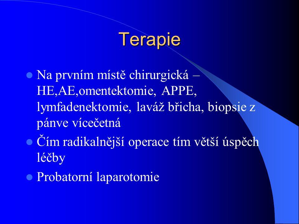 Terapie Na prvním místě chirurgická – HE,AE,omentektomie, APPE, lymfadenektomie, laváž břicha, biopsie z pánve vícečetná.
