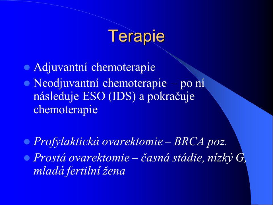 Terapie Adjuvantní chemoterapie