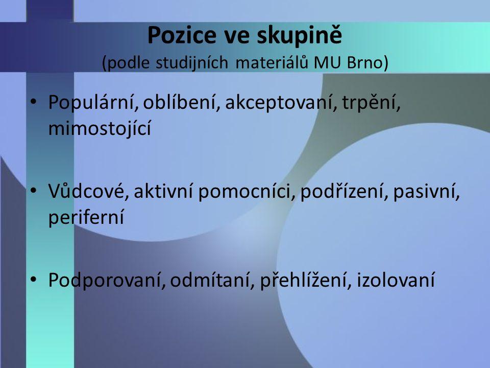 Pozice ve skupině (podle studijních materiálů MU Brno)
