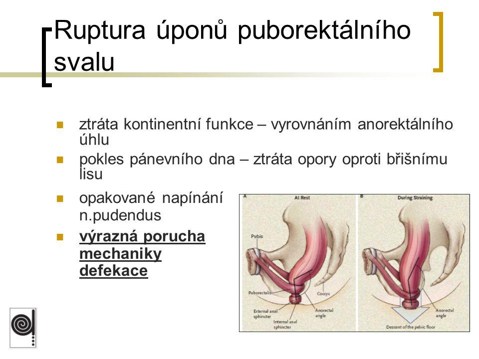 Ruptura úponů puborektálního svalu