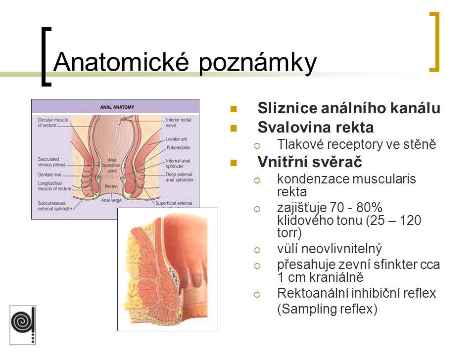 Anatomické poznámky Sliznice análního kanálu Svalovina rekta