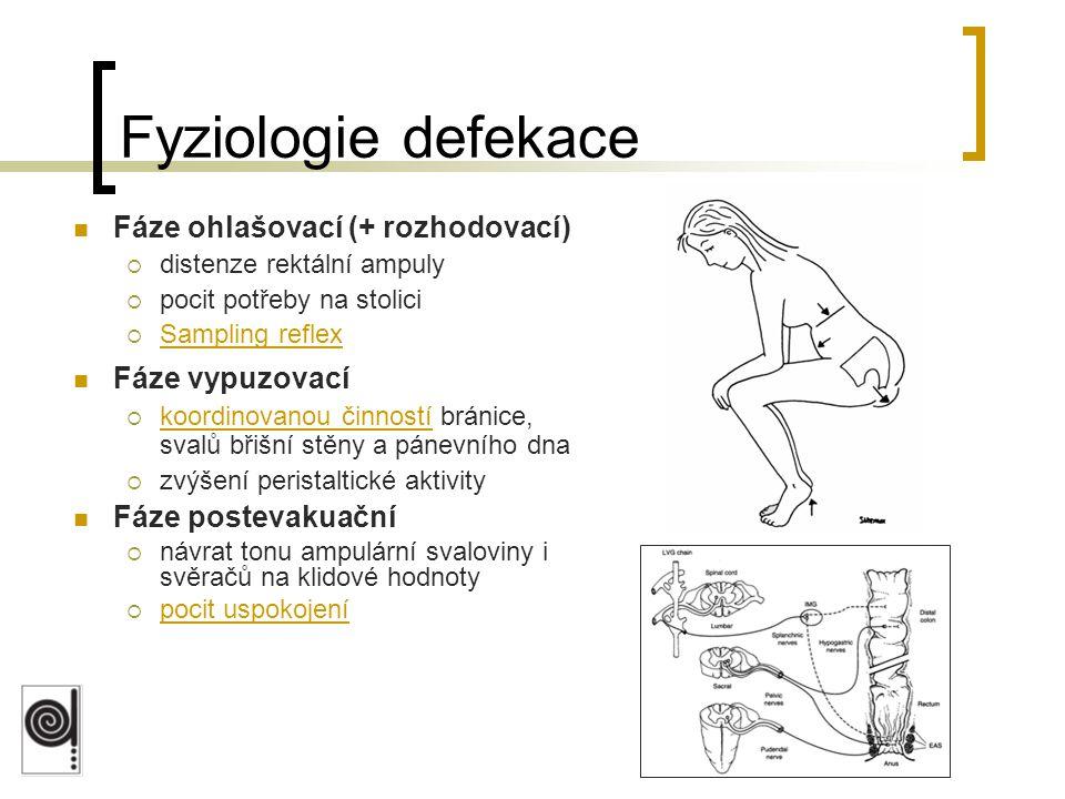Fyziologie defekace Fáze ohlašovací (+ rozhodovací) Fáze vypuzovací