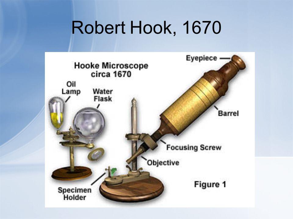 Robert Hook, 1670