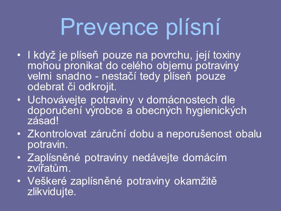 Prevence plísní