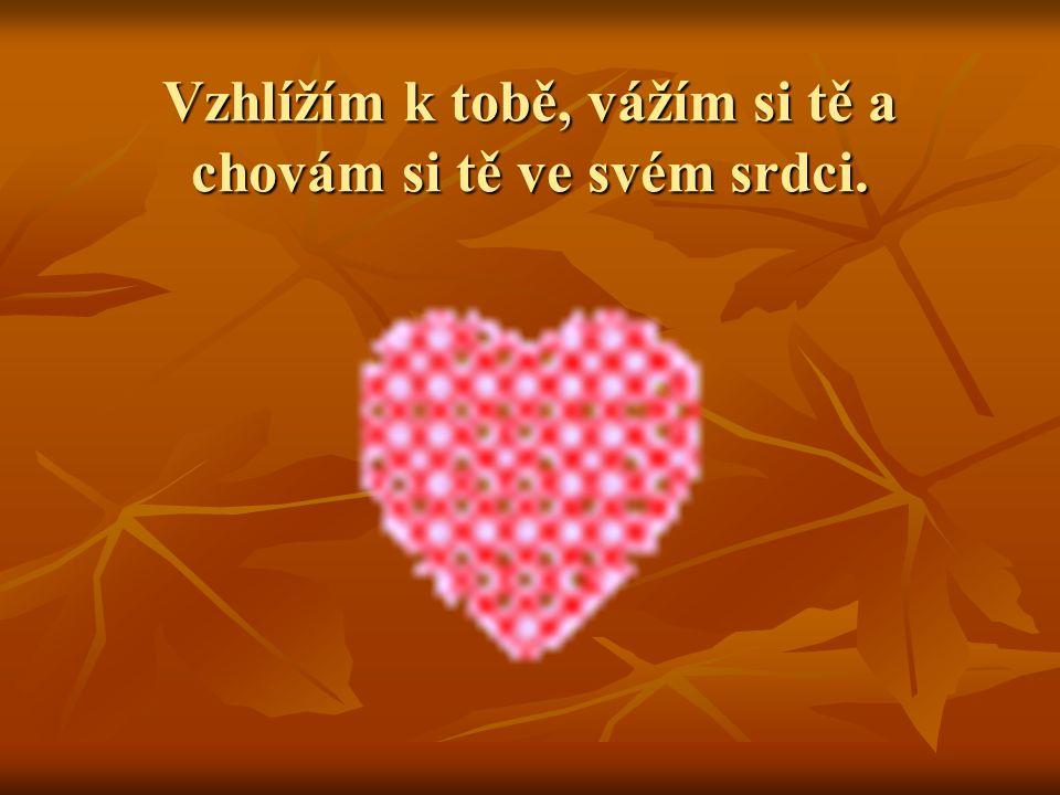 Vzhlížím k tobě, vážím si tě a chovám si tě ve svém srdci.