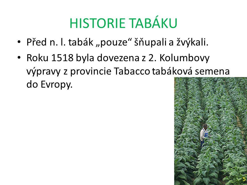 """HISTORIE TABÁKU Před n. l. tabák """"pouze šňupali a žvýkali."""
