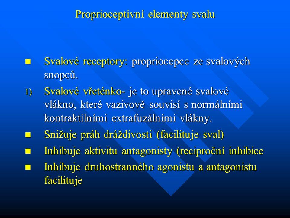 Proprioceptivní elementy svalu