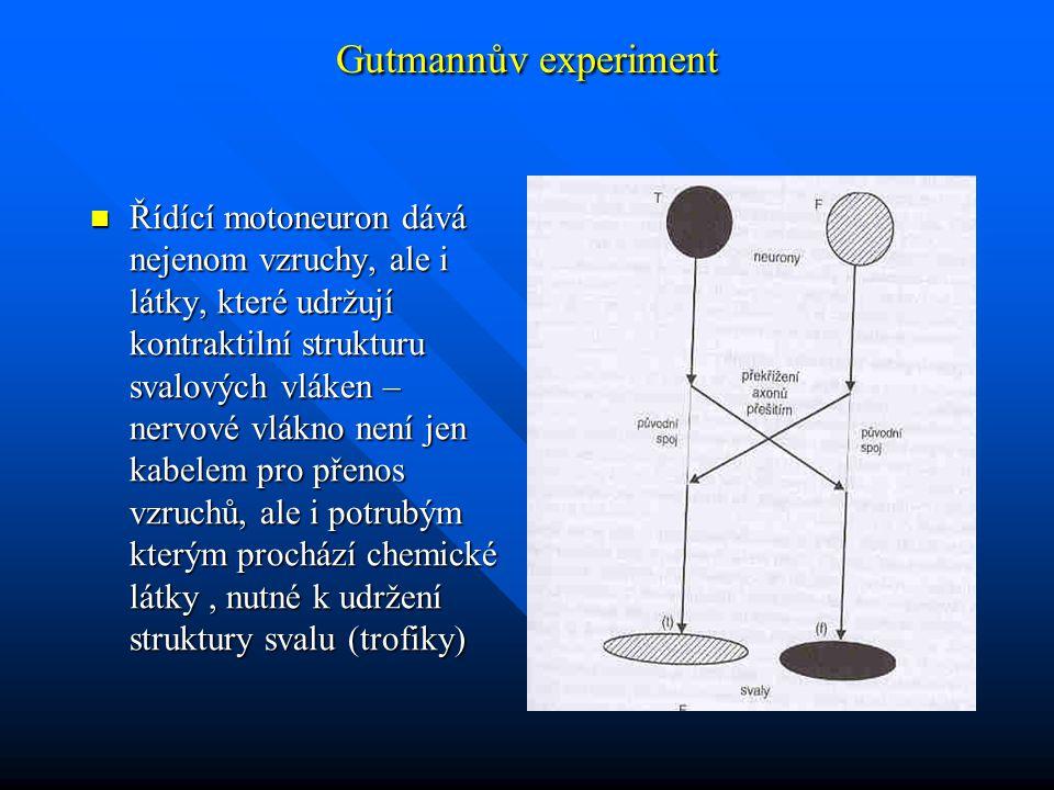 Gutmannův experiment