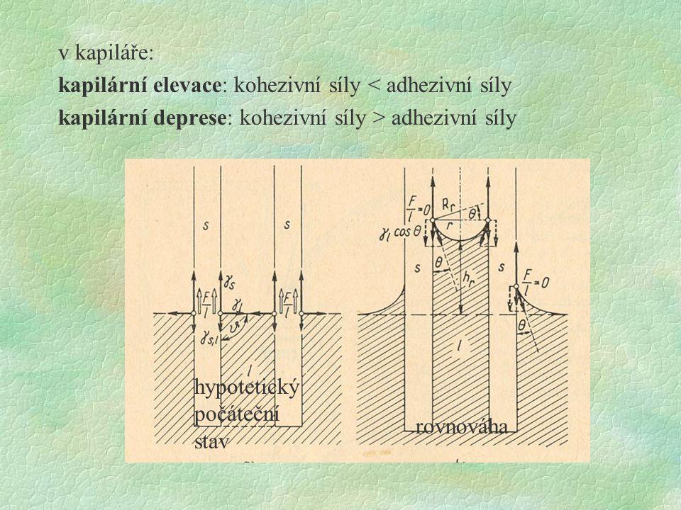 v kapiláře: kapilární elevace: kohezivní síly < adhezivní síly kapilární deprese: kohezivní síly > adhezivní síly