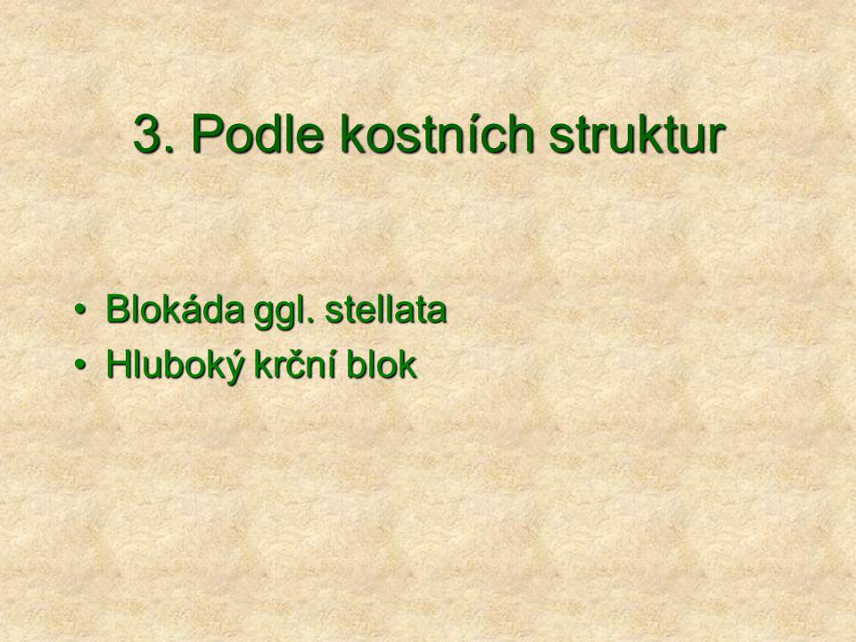 3. Podle kostních struktur