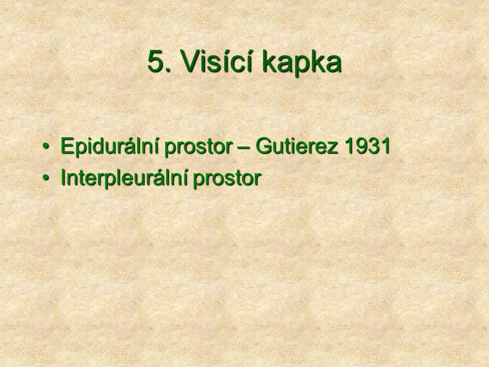 5. Visící kapka Epidurální prostor – Gutierez 1931