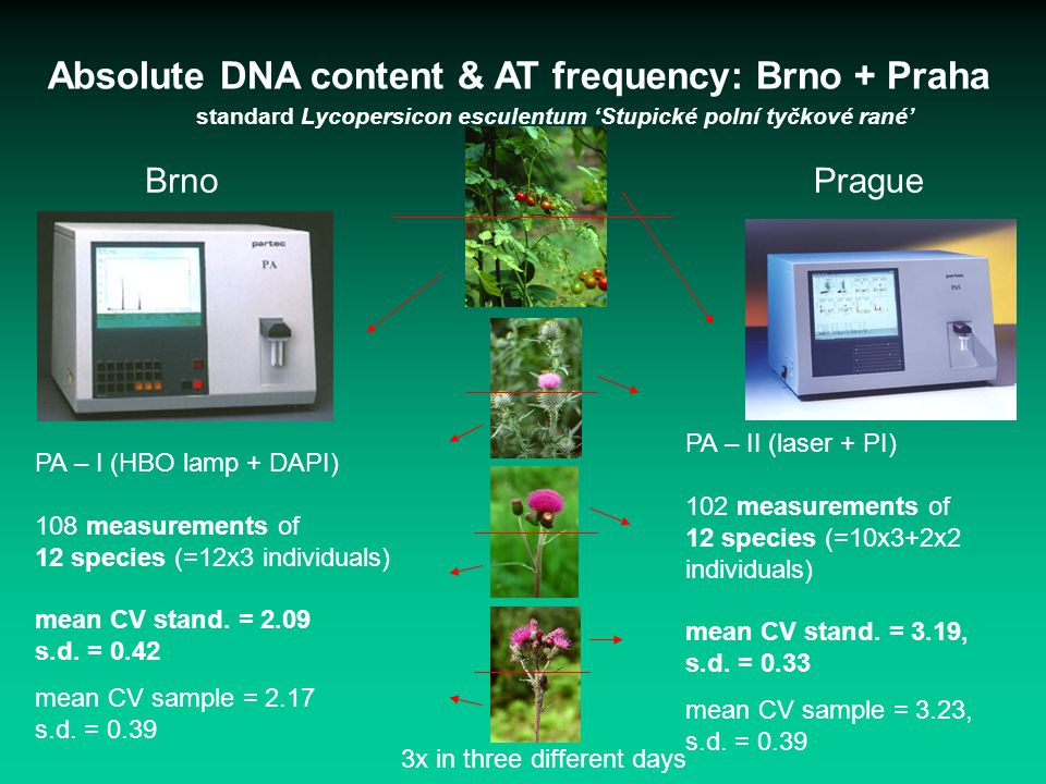 Absolute DNA content & AT frequency: Brno + Praha