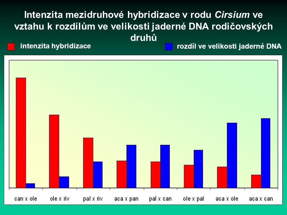 Intenzita mezidruhové hybridizace v rodu Cirsium ve vztahu k rozdílům ve velikosti jaderné DNA rodičovských druhů