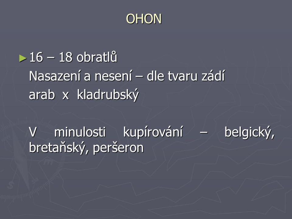 OHON 16 – 18 obratlů. Nasazení a nesení – dle tvaru zádí.