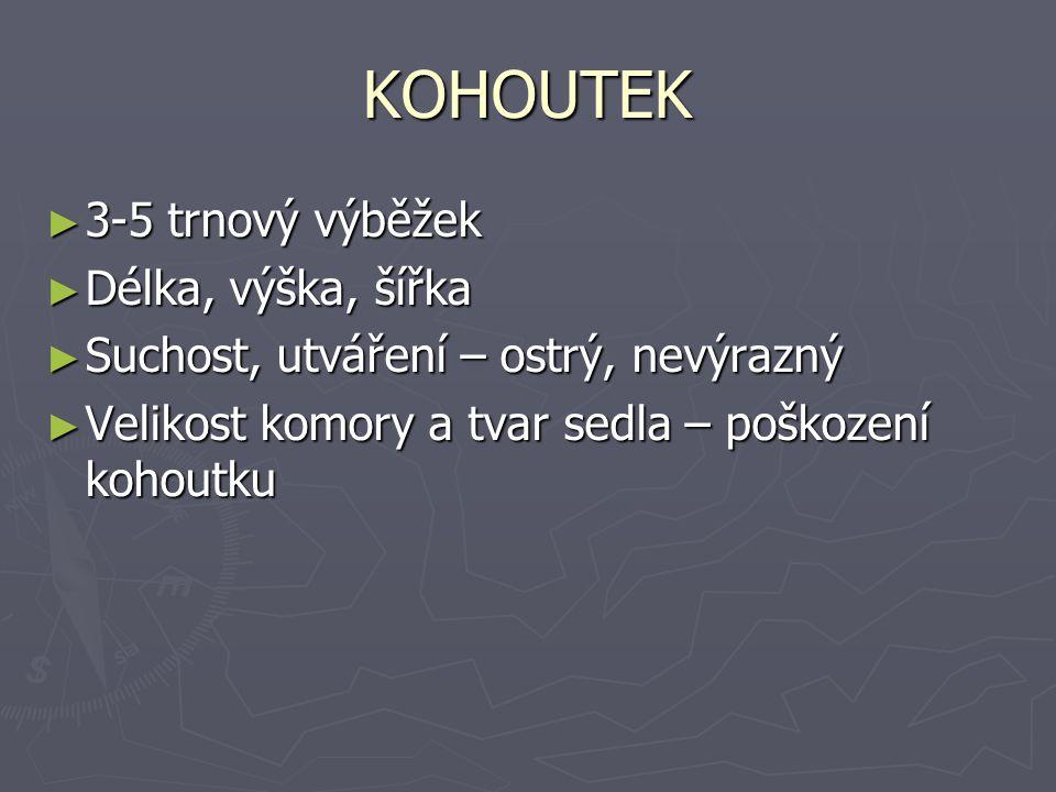 KOHOUTEK 3-5 trnový výběžek Délka, výška, šířka