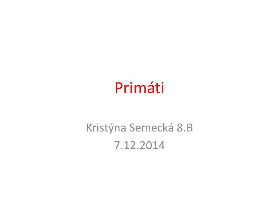 Primáti Kristýna Semecká 8.B 7.12.2014