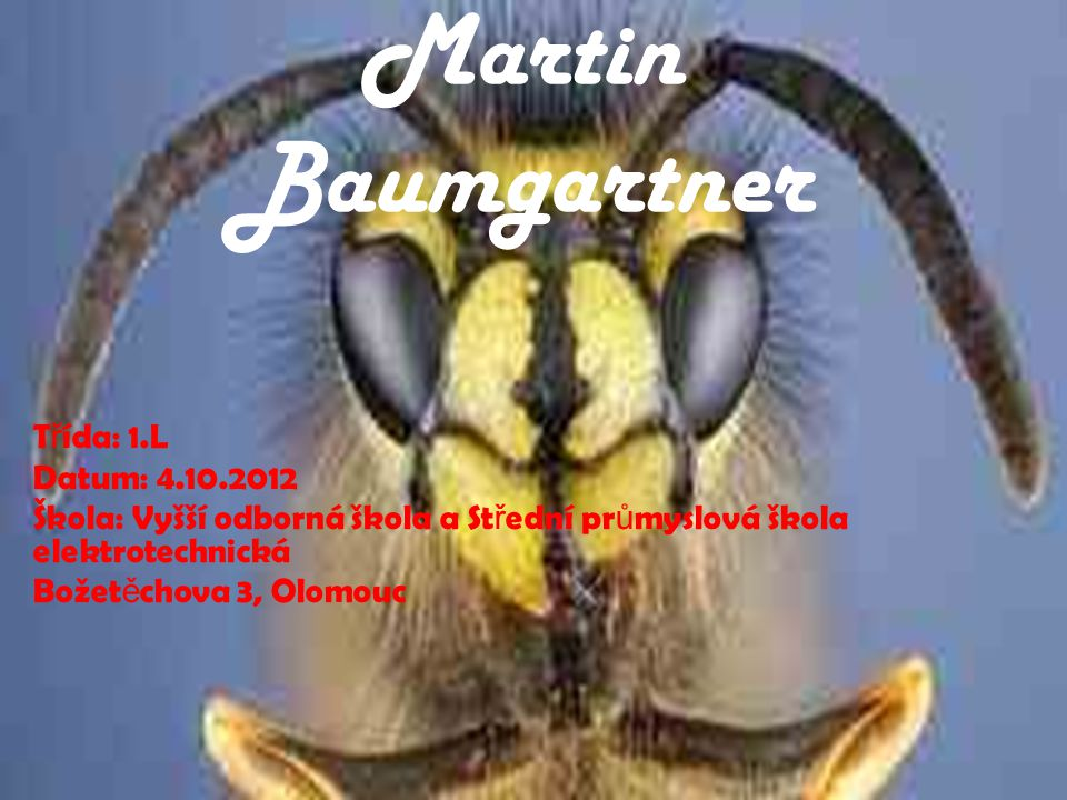 Martin Baumgartner Třída: 1.L Datum: 4.10.2012