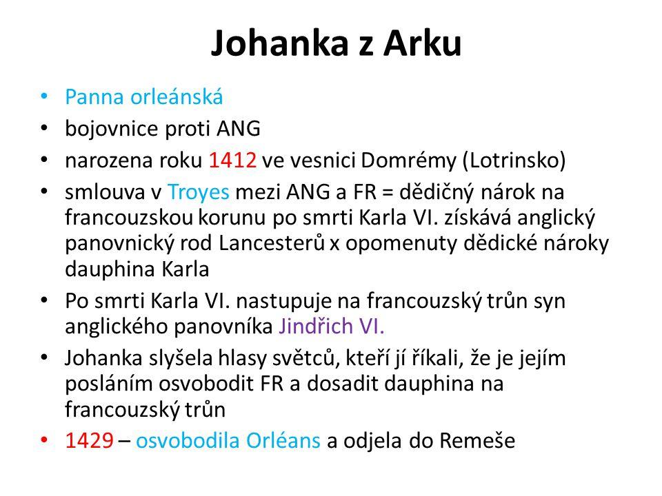 Johanka z Arku Panna orleánská bojovnice proti ANG