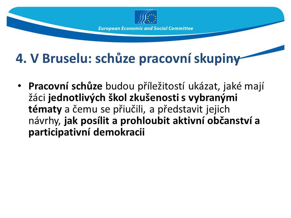 4. V Bruselu: schůze pracovní skupiny