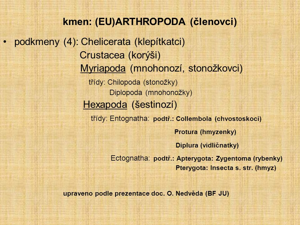 kmen: (EU)ARTHROPODA (členovci)