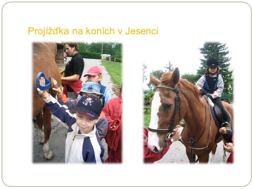 Projížďka na koních v Jesenci