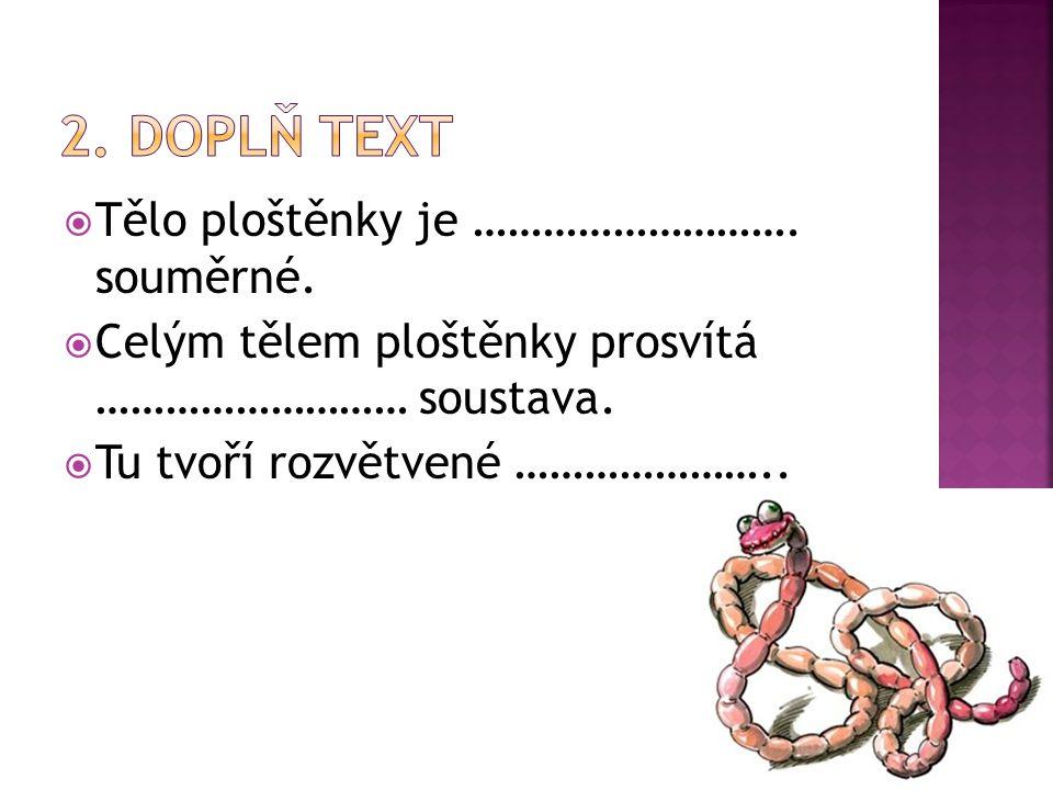 2. Doplň text Tělo ploštěnky je ………………………. souměrné.