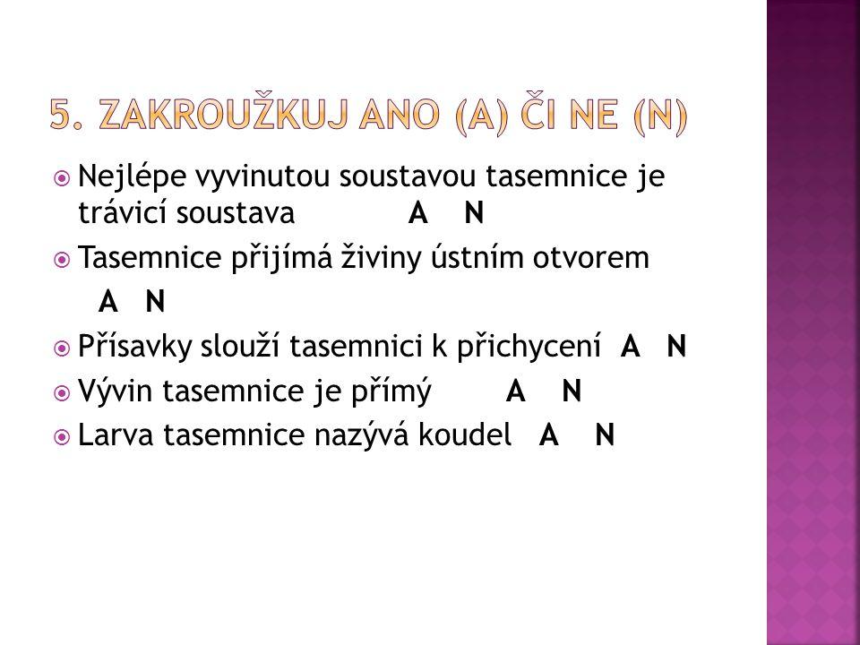 5. Zakroužkuj ano (A) či ne (N)